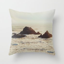 Seal Point Throw Pillow
