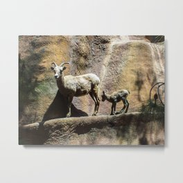 mama and its baby Metal Print