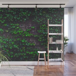 Green Ivy on the Brick Wall (Color) Wall Mural