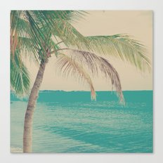 Coco Palm in the Beach  Canvas Print