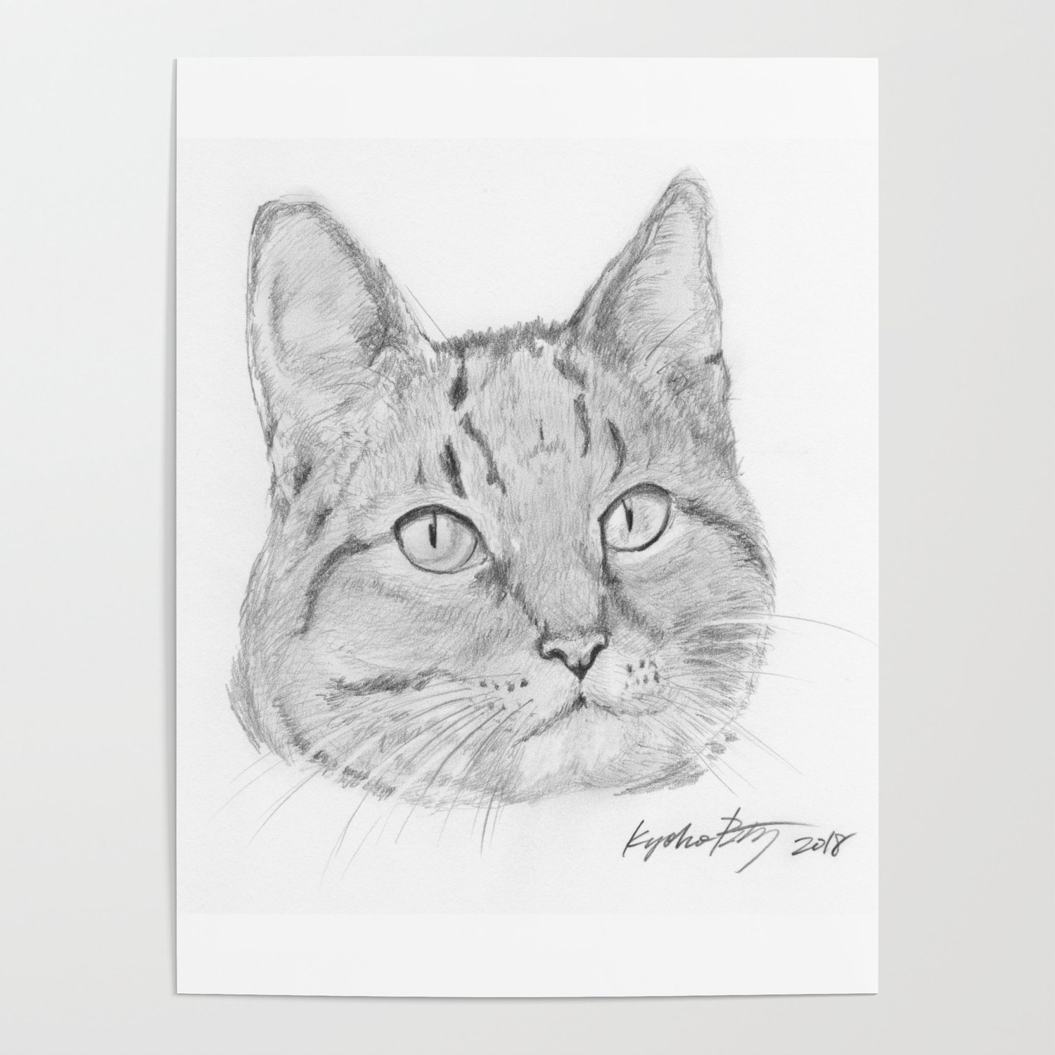 Cat Face Realistic Pencil Sketch Drawing Poster By Kyokobartley
