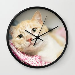 Sweet Ginger Cat Wall Clock