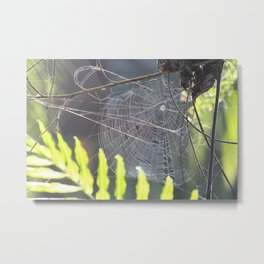 The Weaver Metal Print