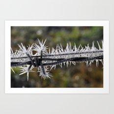 Ice Crystals II Art Print