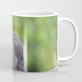 Squirrel Verifiable Kitten Rodent Coffee Mug