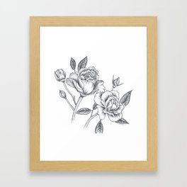 Twin Roses Inked Drawing Framed Art Print