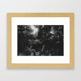 Under the leaves... Framed Art Print