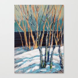 White Birch Grove / Dennis Weber / ShreddyStudio Canvas Print