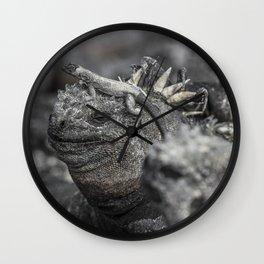 Galapagos marine iguana Wall Clock