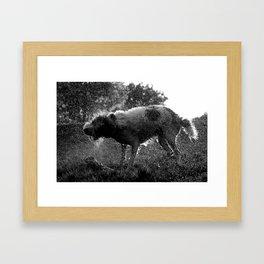 Untitled# Framed Art Print