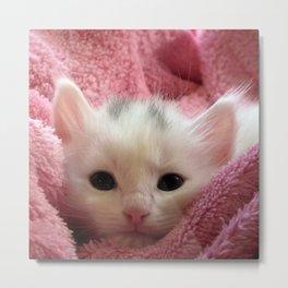 Kawaii cute pink kitten white kitty cat photo Metal Print