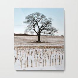 Last Season's Crop Metal Print