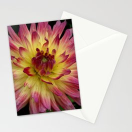 Purple Dahlia 69 Stationery Cards