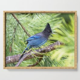 Blue Stellers Jay Serving Tray