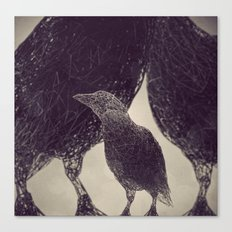 Mr Magpie Canvas Print