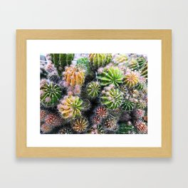 colorful cacti Framed Art Print