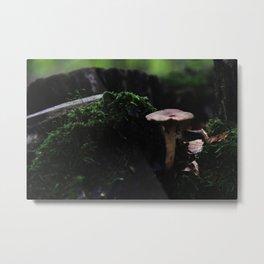 Fungi I Metal Print