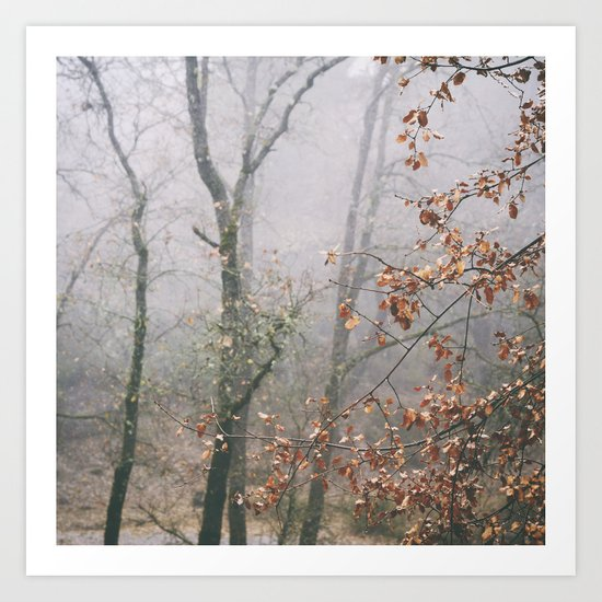 """Into the woods VII"". Wandering into the fog Art Print"