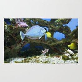 Sea Blue Fish Rug