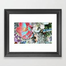 zc Framed Art Print