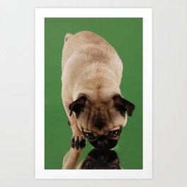 Pug Lara. Art Print
