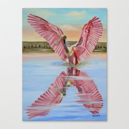 Rockport Roseate Spoonbill Canvas Print