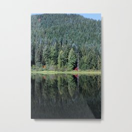 Pines and Reflection Metal Print
