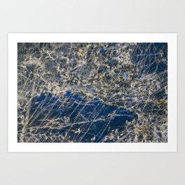 Botanical Gardens - Holographic Mineral #360 Art Print