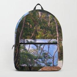 Amazon Onward Backpack