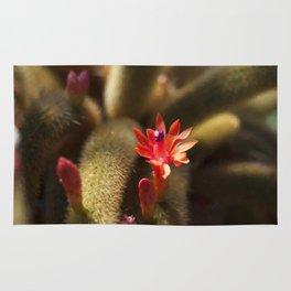 Floral Print 026 Rug