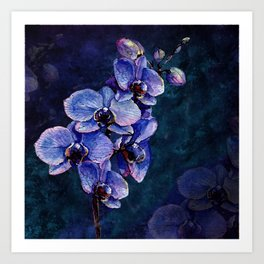 Orchids of the night Art Print