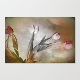 Some Kind of Wonderful Canvas Print