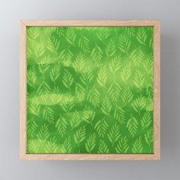 Dappled Light in a Ferny Forest Framed Mini Art Print