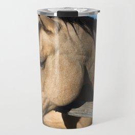Shy - Horse Plays Coy in Western Wyoming Travel Mug