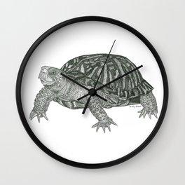 Eastern Box Turtle Wall Clock