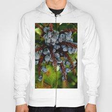 grape tree Hoody