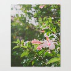 Bring me flowers Canvas Print