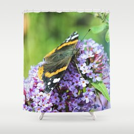 Butterfly VI Shower Curtain