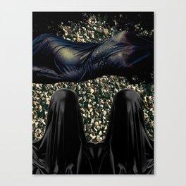 Stellar Yeller Canvas Print
