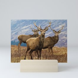 The four stags on the loch Mini Art Print