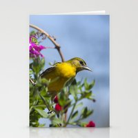 baltimore Stationery Cards featuring Baltimore Oriole by Christina Rollo