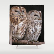 Tawny Owls in Nature Shower Curtain