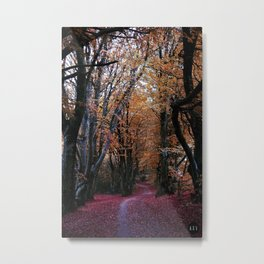 Path of Autumn Metal Print