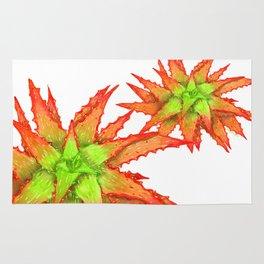 Orange Aloe Rug