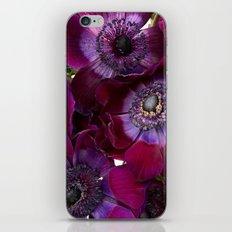 Anemone Coronaria iPhone & iPod Skin