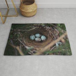 Mockingbird Eggs Rug