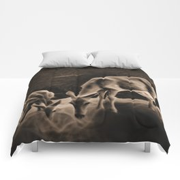 Doe And Fawn At Night Comforters