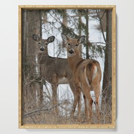 White-Tailed Deer in Winter Serving Tray