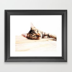 Cats Love Framed Art Print