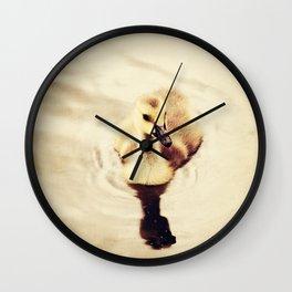 Baby Canadian Goose Wall Clock